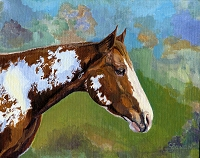 Equine horse painting by Connie Bowen of BP who lives on a ranch in Southern Oregon. He is a paint horse. Paint horses have exquisite markings!