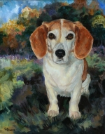 Cindy was a cherished Beagle who lived to the ripe old age of 15 due to Kerri's special herbs and knowledge of pet geriatrics