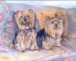 Polo and Tiffany are adorable Yorkshire terriers