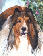 Dog Painting by Connie Bowen of Jordy, a handsome Sheltie. Shelties have so much energy!